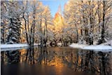 7x5ft Lfeey Vinyl Thin Photography Background Backdrop,Winter Outdoor Trees And River ,2.2(W)x1.5(H)m For Photo Studio Props