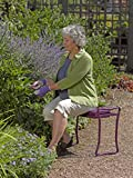 Gardener's Supply Company Extra Wide-Seat Folding