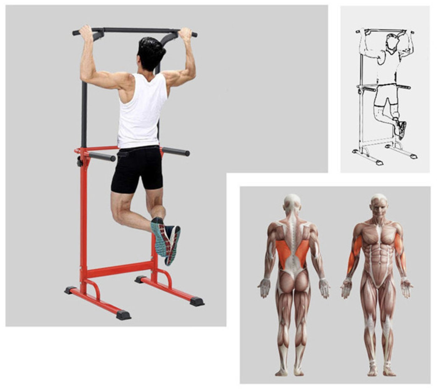 Barra de tracción o estación musculación ajustable