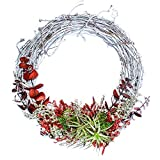 "Furrow & Vine – Fresh and Living Air Plant Grapevine Wreath (14"" White) – Handcrafted in the USA – Decorates any Door or Wall Inside or Outside"