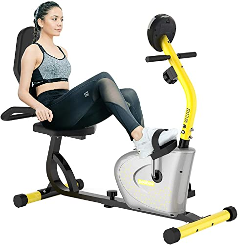 pooboo Magnetic Recumbent Exercise Bike for Seniors Workout Bike for Home Indoor Cycling Bike