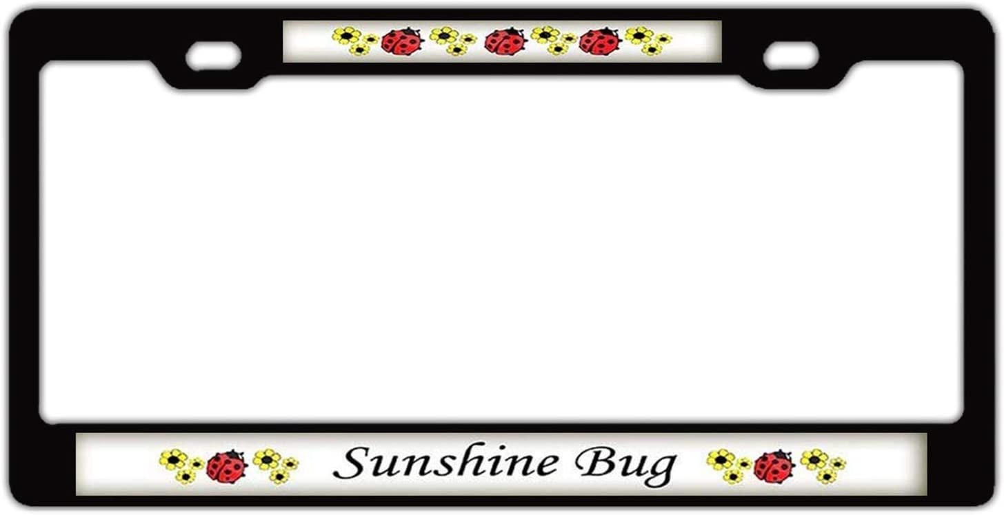 12 x 6 inches Lightning Tactical License Plate Frame Personality Label