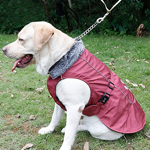 Kuoser outdoor Cotton Thickened Fleece Lining 100% waterproof Dog Vest Winter Coat Warm Dog Apparel for Cold Weather Dog Jacket for Small Medium Large dogs with Furry Collar ( S -3XL ),Red M