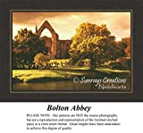 Bolton Abbey, Landscape Counted Cross Stitch PatternsAL-163 (Pattern Only, You Provide the Floss and Fabric)