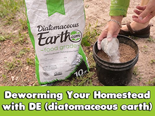 (Deworming Your Homestead with DE (diatomaceous earth))