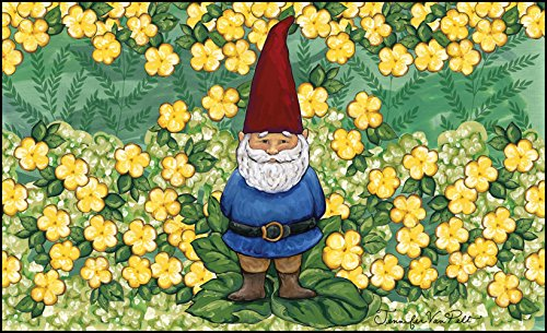 Gnome Mat (Toland Home Garden Garden Gnome 18 x 30 Inch Decorative Summer Floor Mat Spring Flower Doormat)