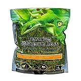 Galapagos 05213 Terrarium Moss, 5-Star Green Sphagnum, Natural, 4-Quart