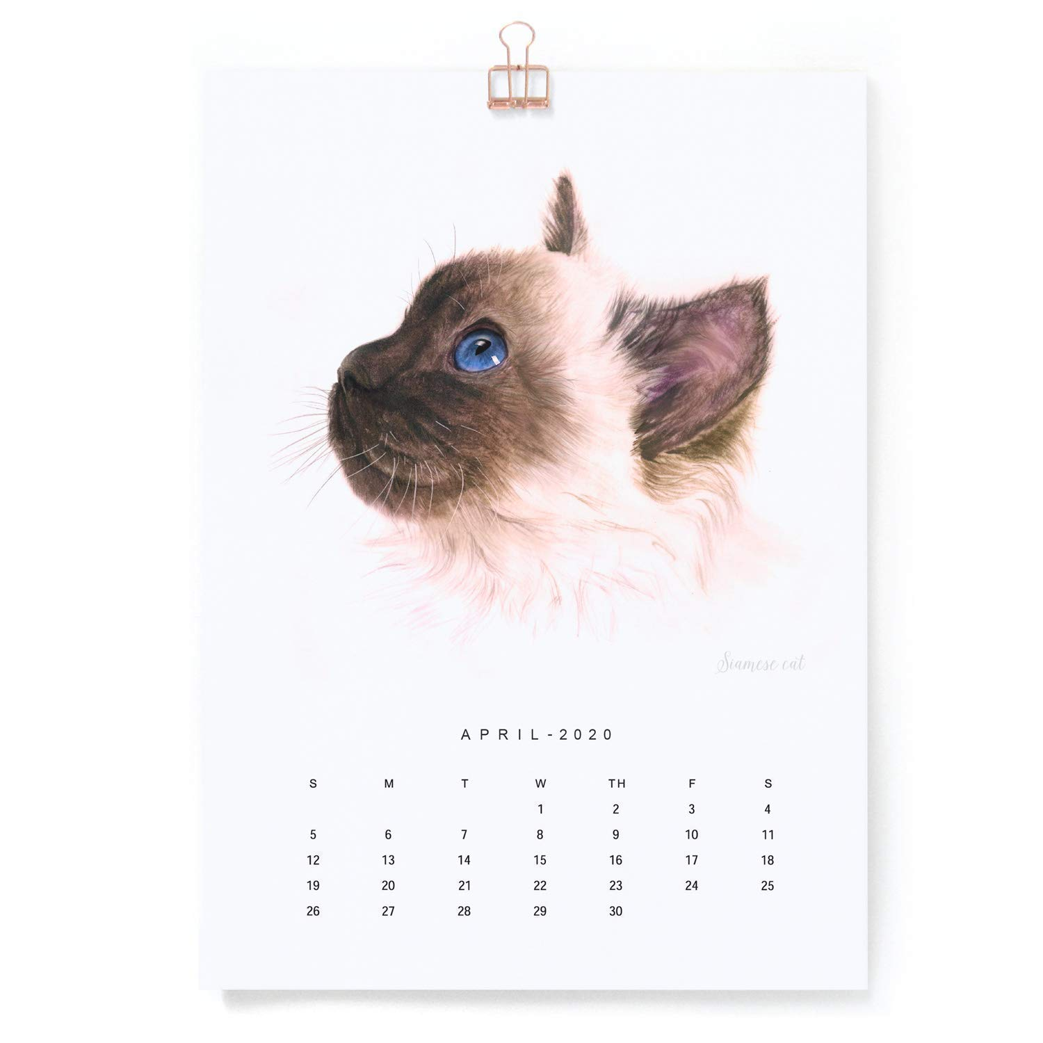 Gift for Cat Lover and kid ready to hang 8.3 x 11.7 Inch 16 month Animal Art Wall Calendar Sep 2019 to Dec 2020 A4 Cat Watercolor Painting Calendar