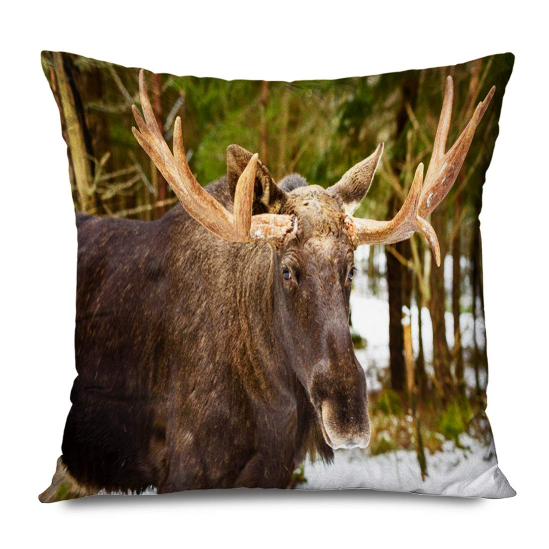 Ahawoso Throw Pillow Cover Square 16x16 Inches Wild Snow Europe Moose Winter Alces Taiga Spring Bull Forest Woodland Terrain Woods Brown Ecology Decorative Pillowcase Home Decor Cushion Case