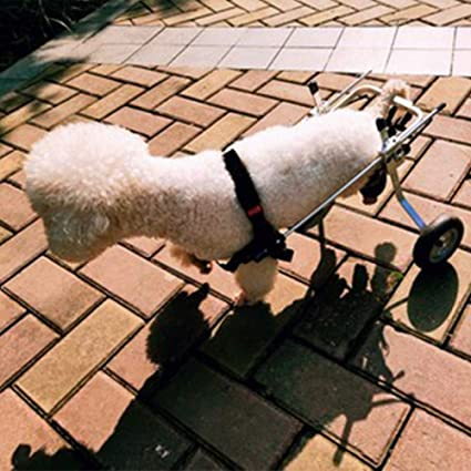JXJL Silla De Ruedas Ajustable para Perros Rehabilitación De Piernas para Perros Discapacitados Carro De Acero