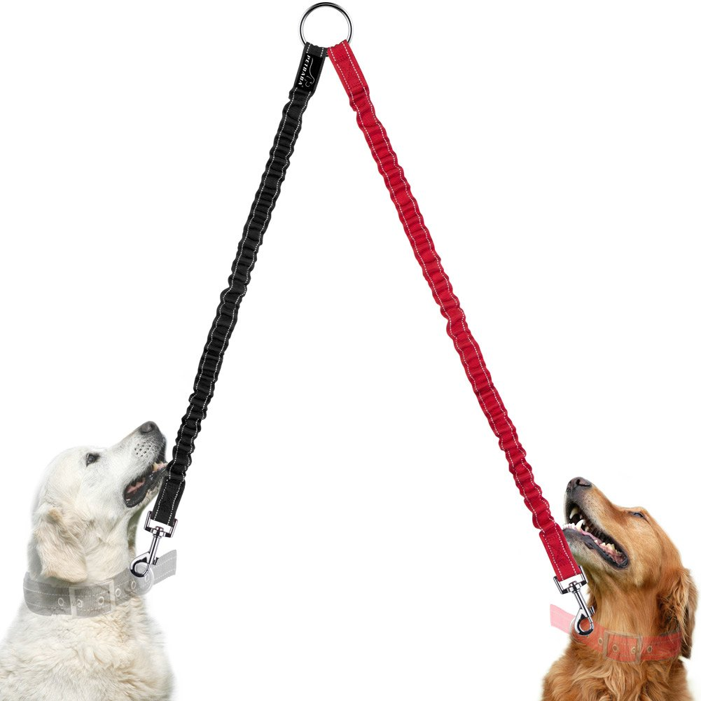 Double Dog Lead Coupler, PETBABA 40cm/1.3ft Long Bungee Reflective Nylon Training Lead for 2 Dogs Blue