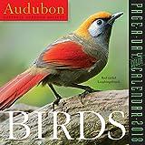img - for Audubon Birds Page-A-Day Calendar 2018 book / textbook / text book