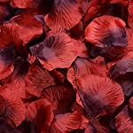 Tinksky-Artificial-Flowers-Rose-Petal-Roseleaf-Wedding-Valentines-Day-Artificial-Flowers-Wedding-Favors-3000pcs-Red-Black