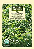 Seeds of Change Certified Organic Nufar F1 Basil Seeds