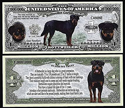 Amazoncom Novelty Notes Rottweiler Dog Bill Puppy Adult Pics