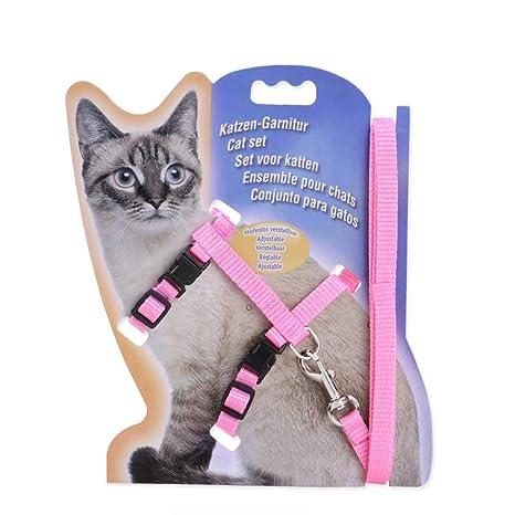 Wapt Pet - Arnés de Nylon para Gatos con Correa | Arnés Ajustable ...