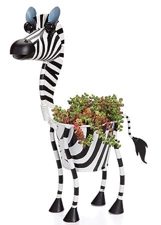 Georgetown Mini Zebra Planter
