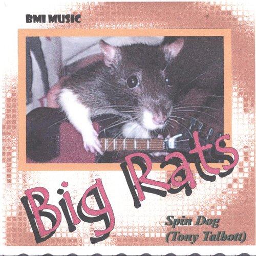 Big Rats / 2 Don'ts - Ts Rat