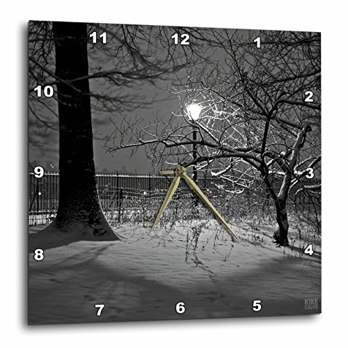 3dRose dpp_10295_1 Wall Clock, Snow blizzard in Central Park Manhattan New York City, 10 by - City Outlets Park Hours