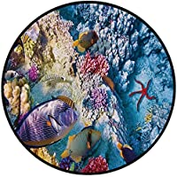 Printing Round Rug,Ocean,Exotic Coral Reefs Fish School Starfish Shallow Clean Lagoon Egyptian Red Sea Image Mat Non-Slip Soft Entrance Mat Door Floor Rug Area Rug For Chair Living Room,Multicolor