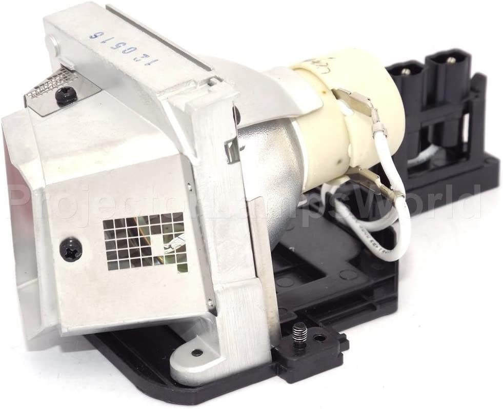 Dell Projector Lamp 725-10203