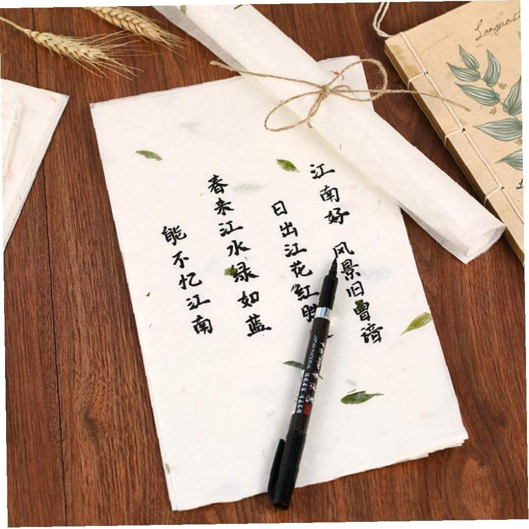 Oulensy 10pcs Chinese Style Paper Chinese Painting Paper Calligraphy Painting Paper Plant Vintage Letter Paper Stationery