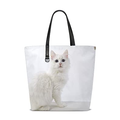 Amazon Com Animal Cat Turkish Angora White Cute Pet Real Fluffy