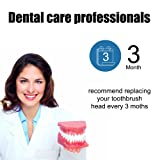 SOGUE Replacement Toothbrush Heads, Deep-Clean