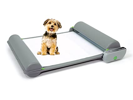 Amazon.com : Brilliant Pad Self-Cleaning, Automatic Indoor Dog Potty ...