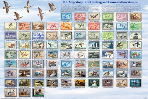 Laminated U.S. Migratory Bird Hunting and Conservation Stamps Poster
