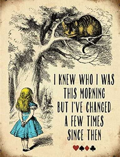 Ecool Targa da Parete in Metallo con Immagine di Alice in Wonderland Knew Who i Was This Morning But Ive Changed a Few Times Since Then r/étro Shabby Chic Vintage 280 mm x 200 mm