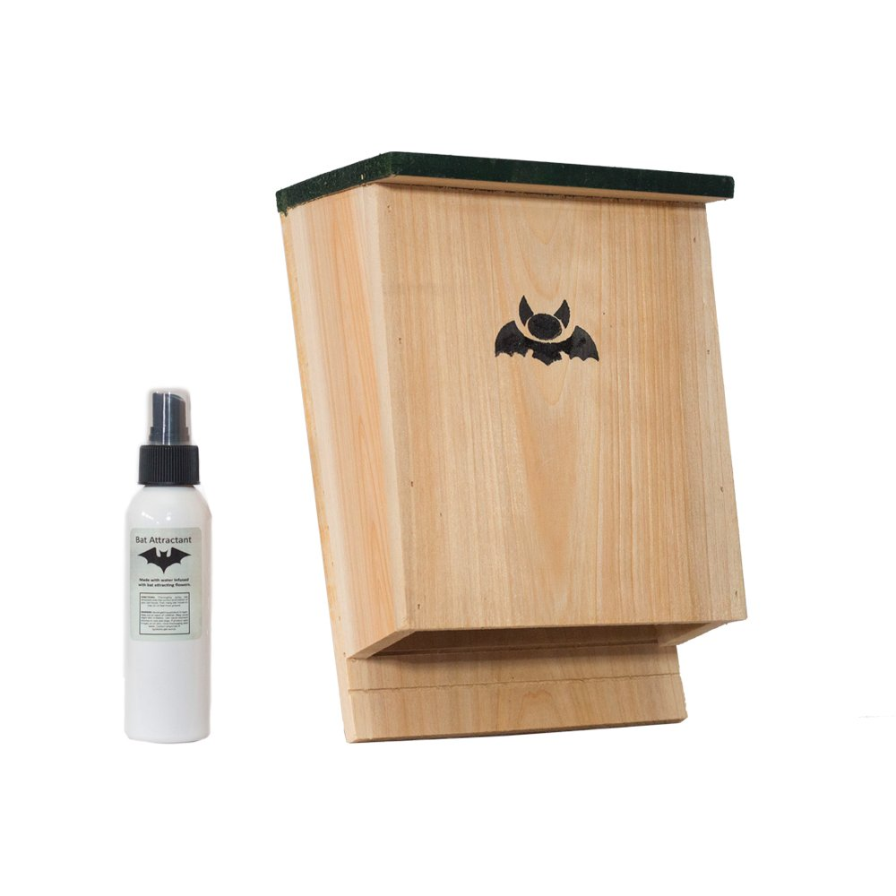 Bat Attractant: The Secret Weapon For Bat House Success