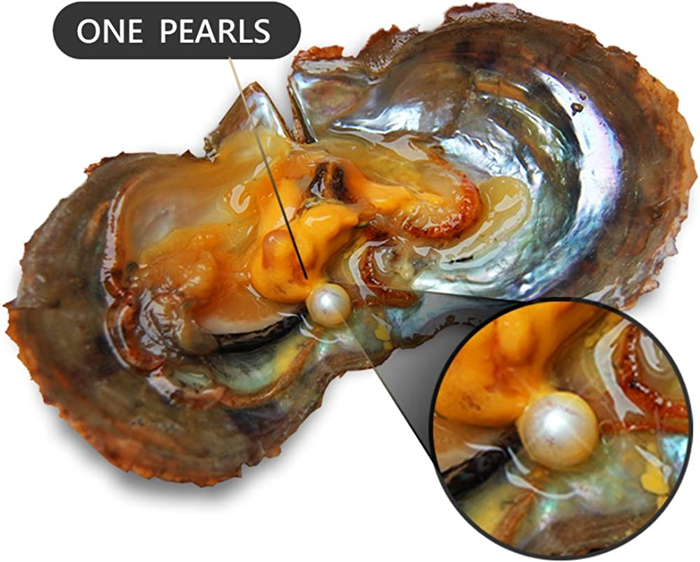 Akoya Love Wish Pearl Oyster in Vacuum Packing NY Jewelry 6-7mm Saltwater Cultured Pearl in Oyster White, Pink, Purple, Black Pack of 5 Pcs