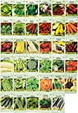Set of 35 Assorted Vegetable & Herb Seeds 35