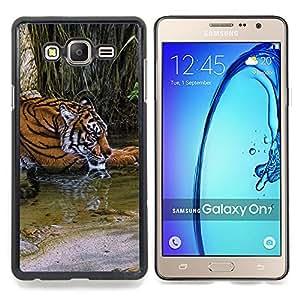 """Qstar Arte & diseño plástico duro Fundas Cover Cubre Hard Case Cover para Samsung Galaxy On7 O7 (Río Tigre lindo Piel África Naturaleza Verde"""")"""