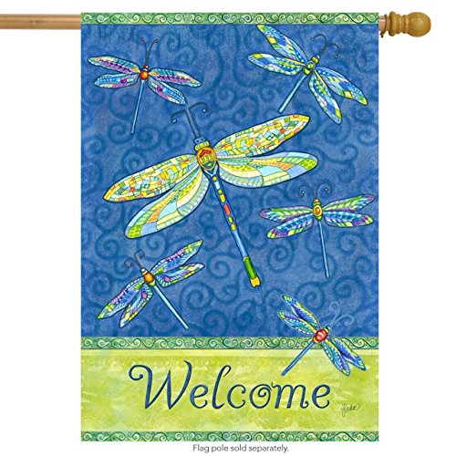 Briarwood Lane Dragonfly Flight Spring House Flag Welcome Dragonflies 28