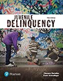 img - for Juvenile Delinquency (Justice Series) (3rd Edition) (The Justice Series) book / textbook / text book