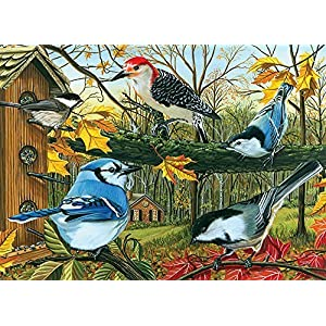 Cobble Hill Blue Jay And Friends Jigsaw Puzzle 1000 Piece By Cobble Hill