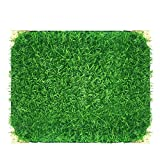 "Home Cal Artificial Grass Turf Ornamental Fake Grass with Metal Angle Decoration for Indoor&Outdoor with Neat Edge 40""x28"""