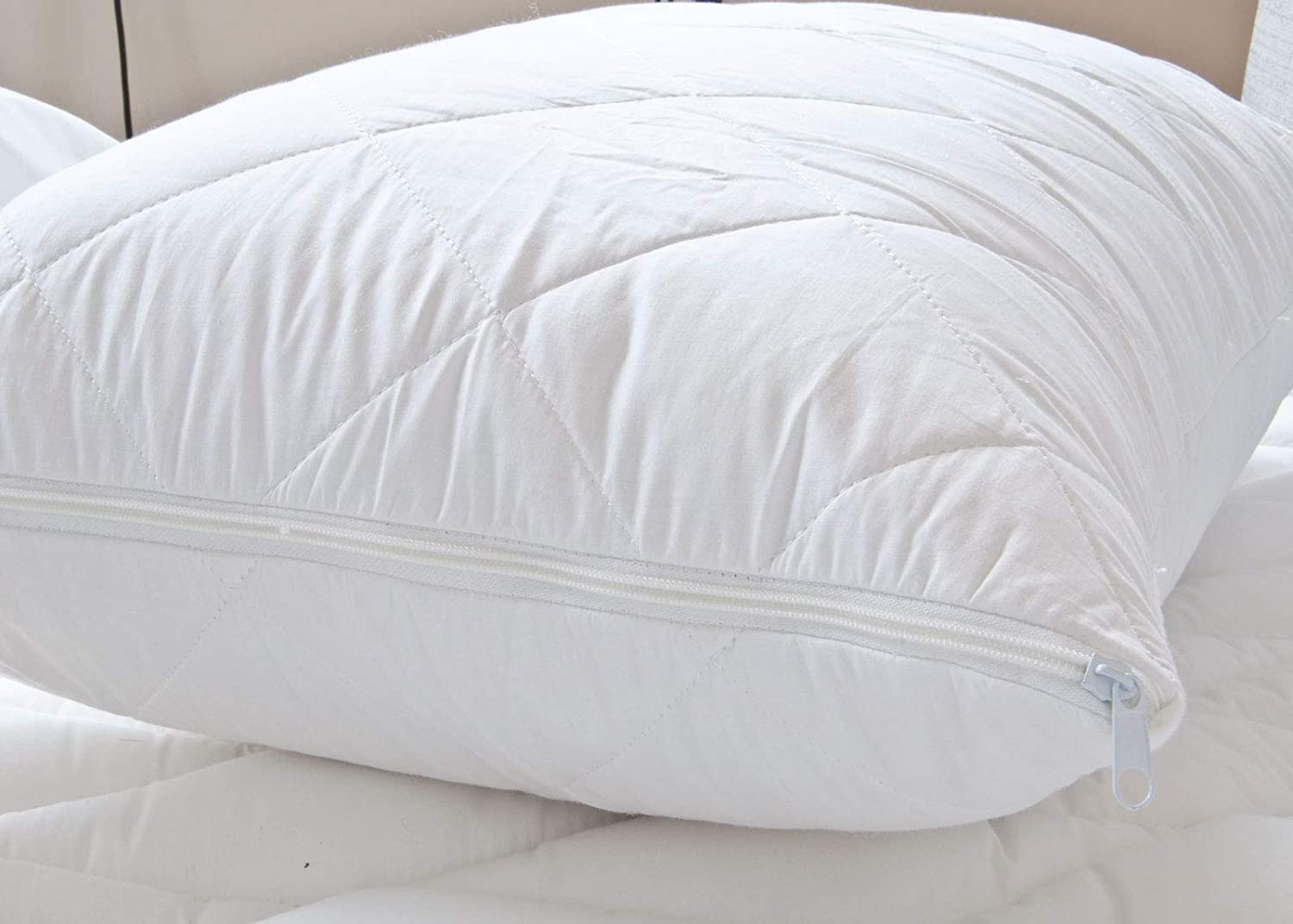 Pair of pillow protector