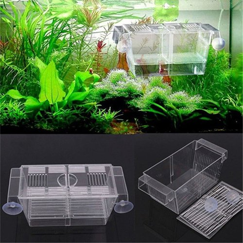 qsbai Fish Breeding Box Breeder Rearing Trap Boxes Hatchery Aquarium Guppy Supplies - Fish Breeding Supplies