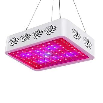 Roleadro 1000w LED Cultivo Lámpara de Plantas Hidroponico Grow Led para Cultivo Interior y Invernaderos Jardin
