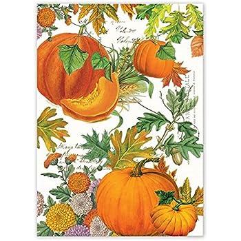 Michel Design Works TOW281 Cotton Kitchen Dish Towel, Pumpkin Melody