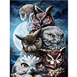 Fenebort 5D Creative DIY Diamond Painting, Full Drill Dream Home Rhinestone Embroidery Arts Craft for Home Wall Decoration 30x40cm(Owl, Sea)