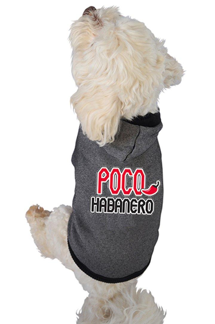 Ruff Ruff & Meow Dog Hoodie, Large, Poco Habablack, Black