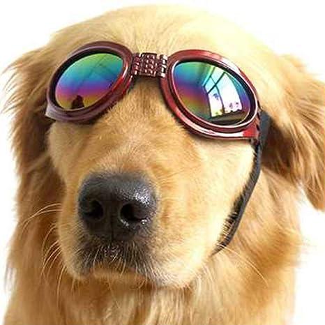 Hemore Gafas de Sol para Perros protección UV y Correa ...