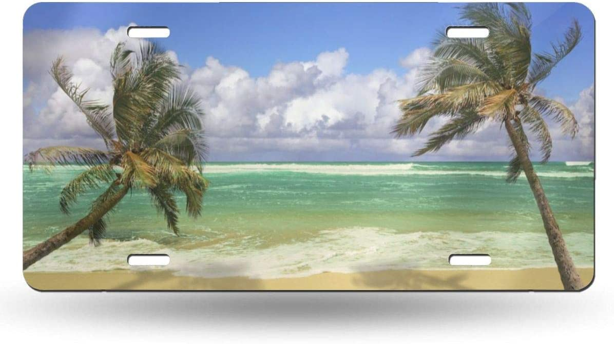 YiiHaanBuy License Plate Palm Trees Tropical Paradise Ocean Beach Scene Decorative Car Front License Plate,Vanity Tag,Metal Car Plate,Aluminum Novelty License Plate,6 X 12 Inch 4 Holes
