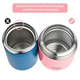 Insulated Lunch Container DaCool Hot Food Jar 16 oz Stainless Steel Vacuum Bento Lunch Box for Kids Girls Adult with Spoon Leak Proof Hot Cold Food for School Office Picnic Travel Outdoors - Pink