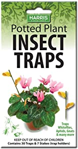 Harris Potted Plant Insect Traps for Gnats, Aphids, Whiteflies and More (30 Traps, 7 Stakes)