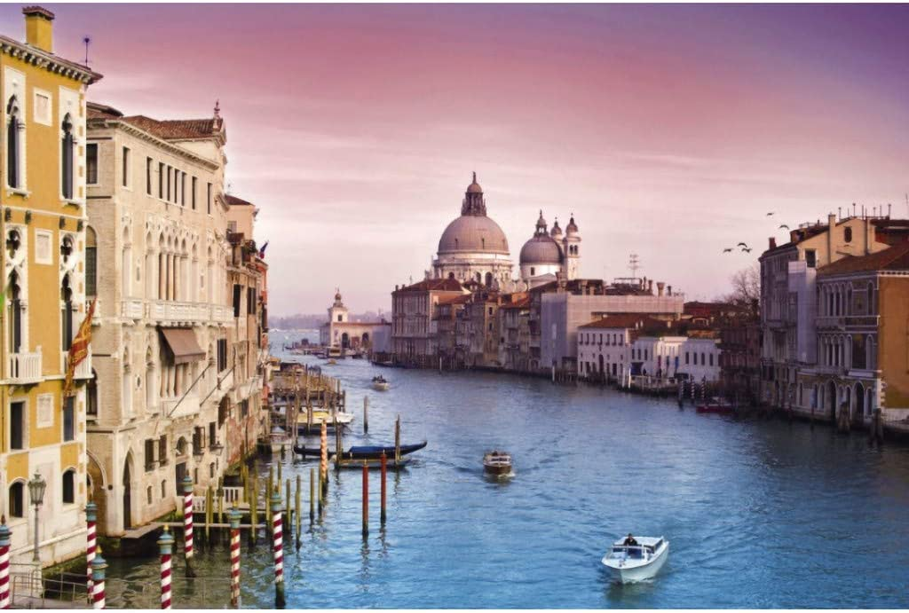 TREPP 1000 Piece Jigsaw Puzzle – View of Venice in Italy - Adult Children Puzzle DIY Home Decor Festival Gift